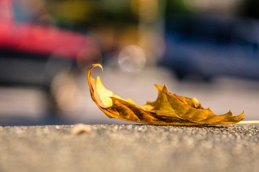 Voi hyvin syksyllä